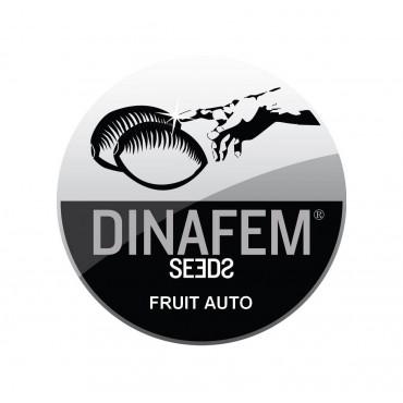FRUIT AUTOFLOWERING ...