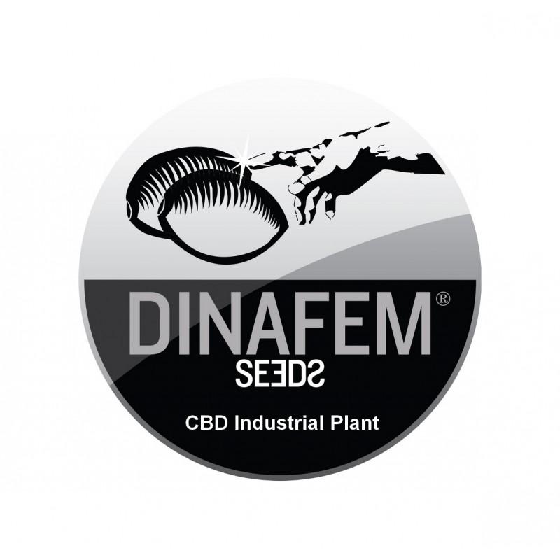 INDUSTRIAL PLANT CBD AUTOFLOWERING ® DINAFEM SEEDS